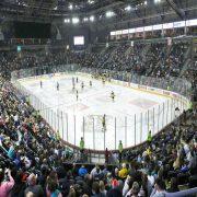 Belfast Ice Hockey - Irish Sporting Tours
