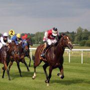 Horse Racing - Irish Sporting Tours