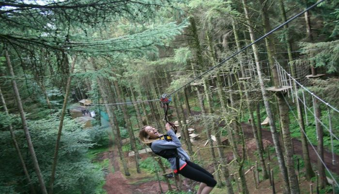 The Jungle Adventure Park - Irish Sporting Tours