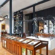 Lapworth Museum - Rugby Tours To Warwick