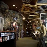 Weta Cave Museum - Rugby Tours To Wellington, Irish Rugby Tours
