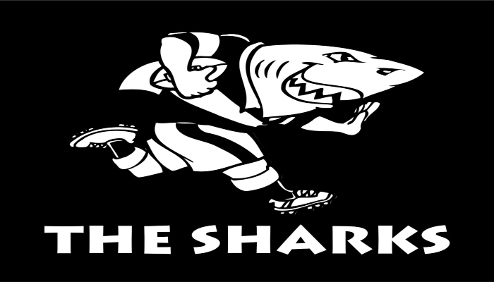 Sharks Rugby - Rugby Tours To Durban, Irish Rugby Tours